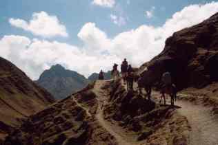 Horses to Qolloriti