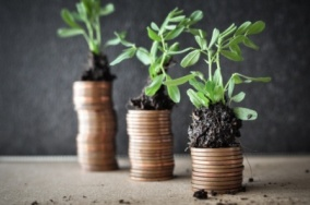 plants-growing-on-coins-compressed-flipped-adobestock_106627490