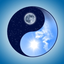 symbol of yin and yang of the background