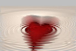 heart- compressed Gerd Altmann Pixabay 1982316_1920