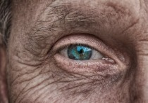 Old man eye -User analogicus compressed 3358873_1920